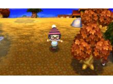 Nintendo Wii Animal Crossing: Let'Go to the City