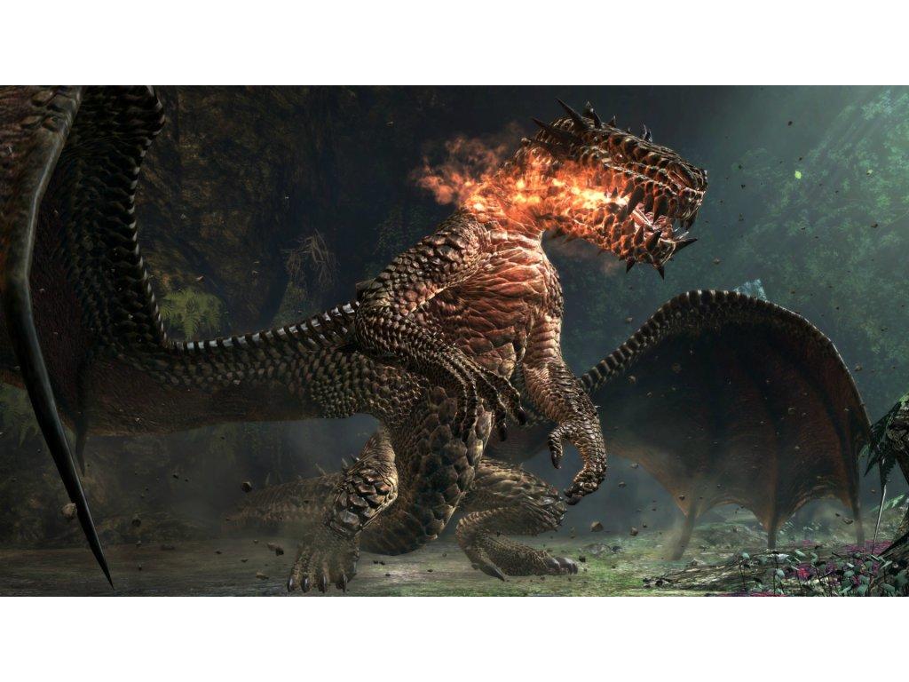 PS3 Dragons Dogma